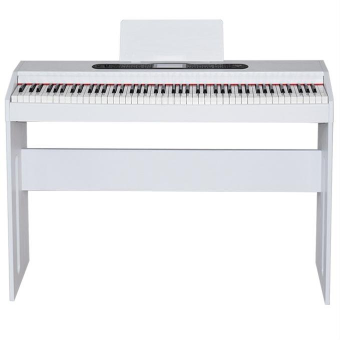 비바체전자피아노